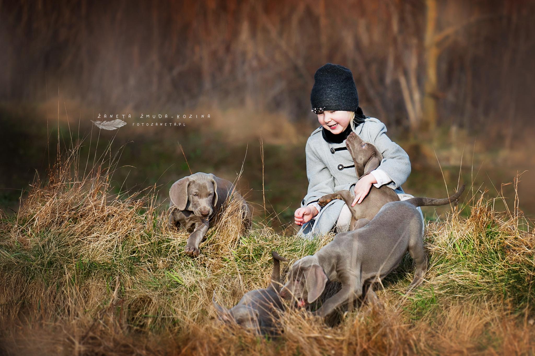 FotoZaneta sesje ze zwierzetami Pomiechówek