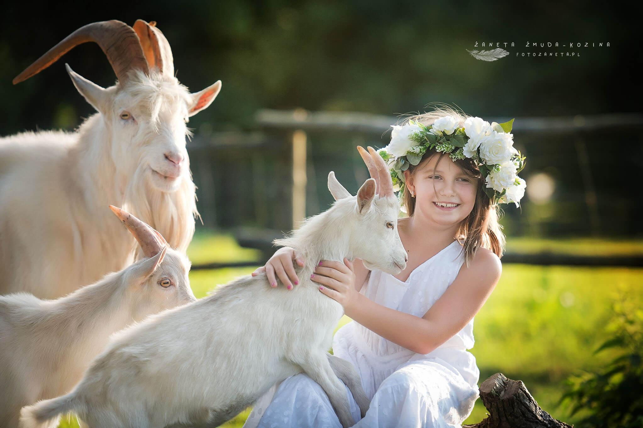 FotoZaneta fotografie ze zwierzetami