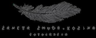 logo ZANETA