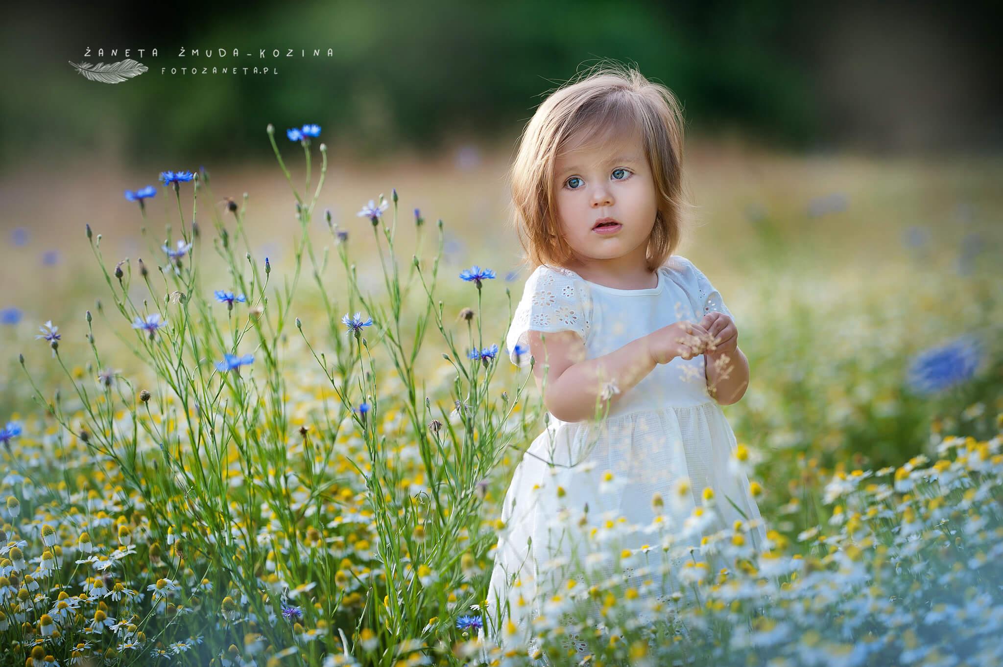 Lato w kwiatach