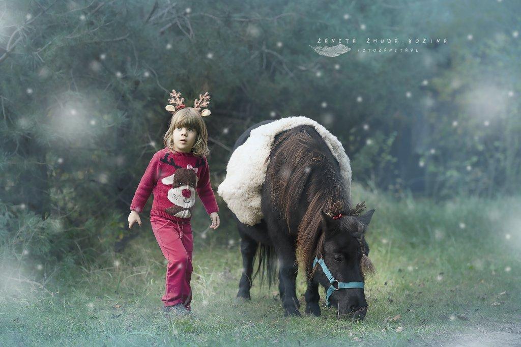 Sesja z koniem Nowy Dwór Maz